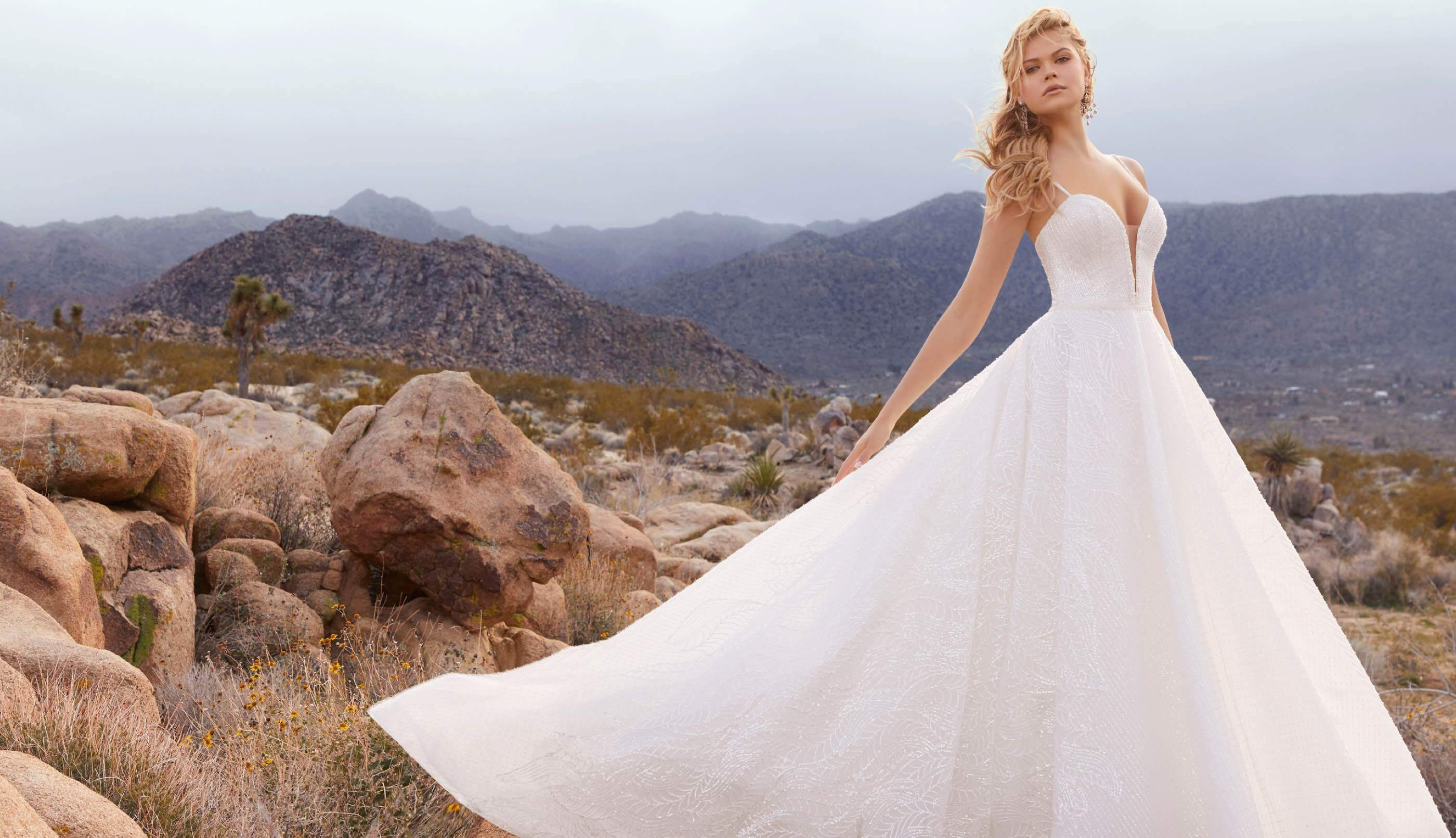 Model wearing ball gown wedding dress in desert background